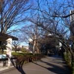 板橋Cityマラソン〜後半〜