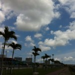 ついに沖縄が徳島に・・・