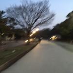 福岡ランナーの聖地、大濠公園を走ってきました〜♪