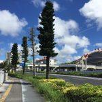 沖縄を北へ38km走って来ました〜